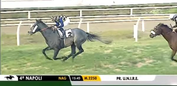 Jakkalberry relative takes out Listed Premio